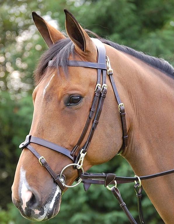 Dy On Working Collection Flat Flash Bridle With Snaps